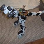 MicroRaptor-17-712629