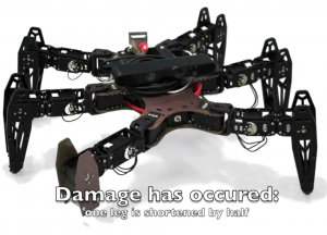 hexapod damaged