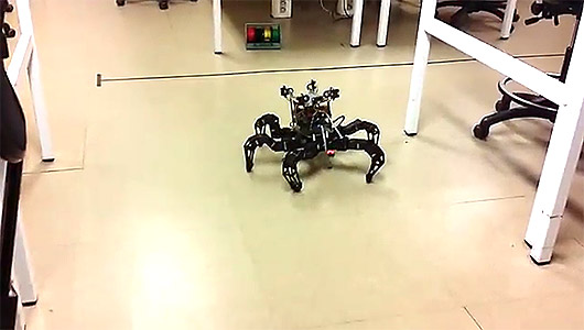 hexapod stabilized