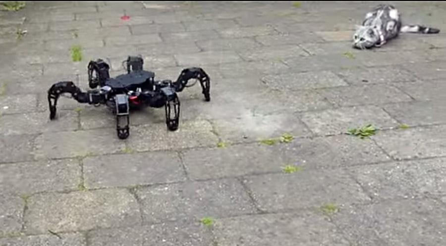 Trossen Robotics PhantomX running Phoenix code